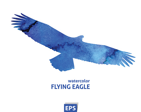 Watercolor flying blue eagle