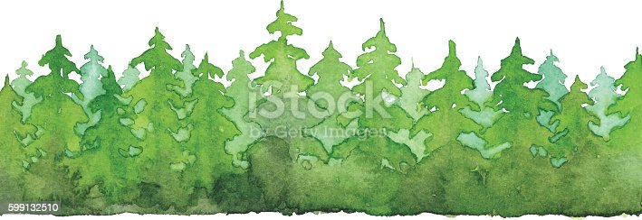 Vector illustration of pine tree forest.