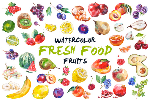 Watercolor painted collection of fruits. Hand drawn fresh food design elements isolated on white background.