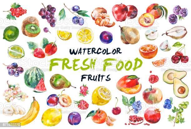 Watercolor fruits isolated on white vector id877522270?b=1&k=6&m=877522270&s=612x612&h=q6 2dusxu3yxpyugtlpa3rk sxxrylef1zfdol1hdvq=