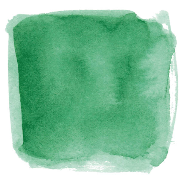 Watercolor green background vector art illustration