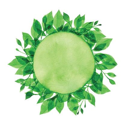 Watercolor Green Branch And Circle