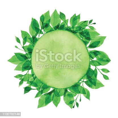 Vector illustration of Green Plants.