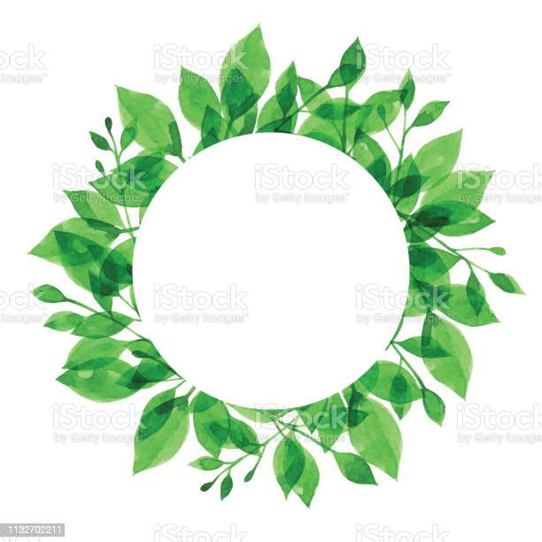 Watercolor green branch frame with white circle vector id1132702211?b=1&k=6&m=1132702211&s=612x612&h=ux51izutbtd0r xtmycfbouaf32hioefr6mteiwhw8e=