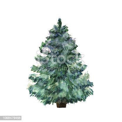 Watercolor green Christmas tree on white background. Isolated hand drawn plant for your design. Vector illustration