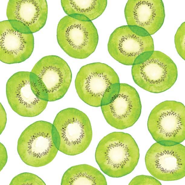 bildbanksillustrationer, clip art samt tecknat material och ikoner med akvarell grön kiwi mönster - kivik