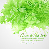 Watercolor green leaf design element. Vector illustration