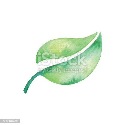 istock Watercolor Green Leaf 529406982