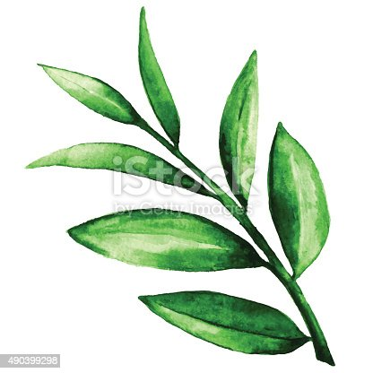 istock Watercolor green leaves 490399298