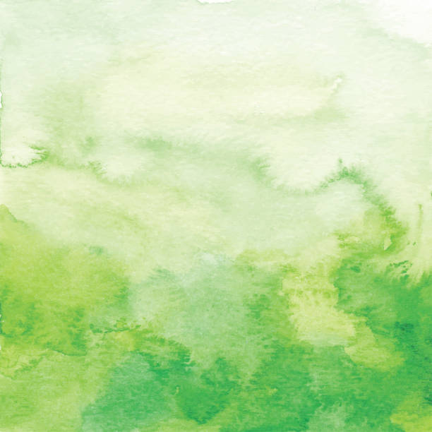 illustrazioni stock, clip art, cartoni animati e icone di tendenza di watercolor green ombre backdrop - verde