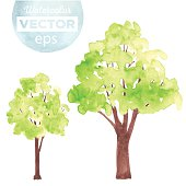 Watercolor green trees