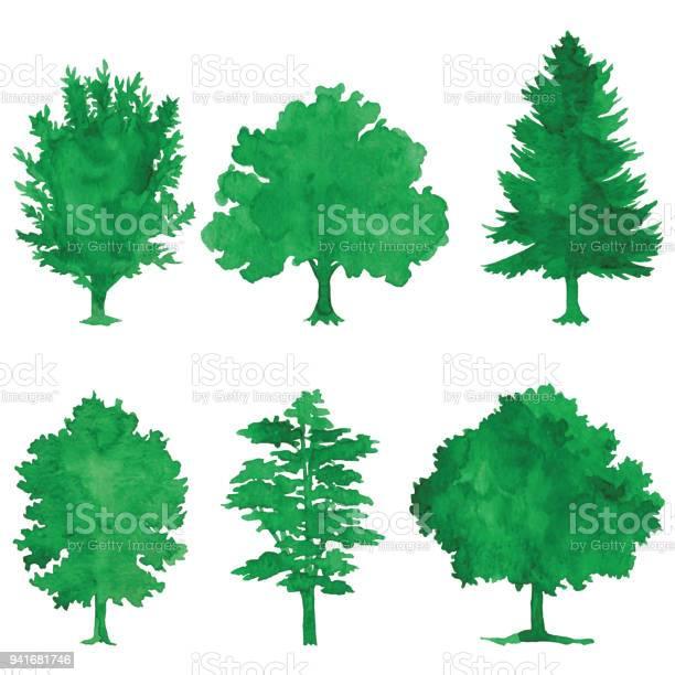 Watercolor green trees vector id941681746?b=1&k=6&m=941681746&s=612x612&h=eu1vwt6bc1hfkbb85ze orj7nkberbpaafmlptj39jy=