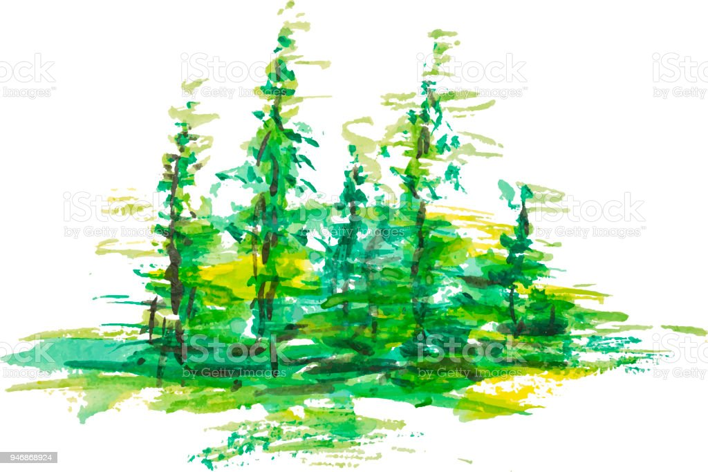 Watercolor group of fir trees green forest landscape, Drawing on white isolated background. Eps 10 vector illustration for your design, vector art illustration