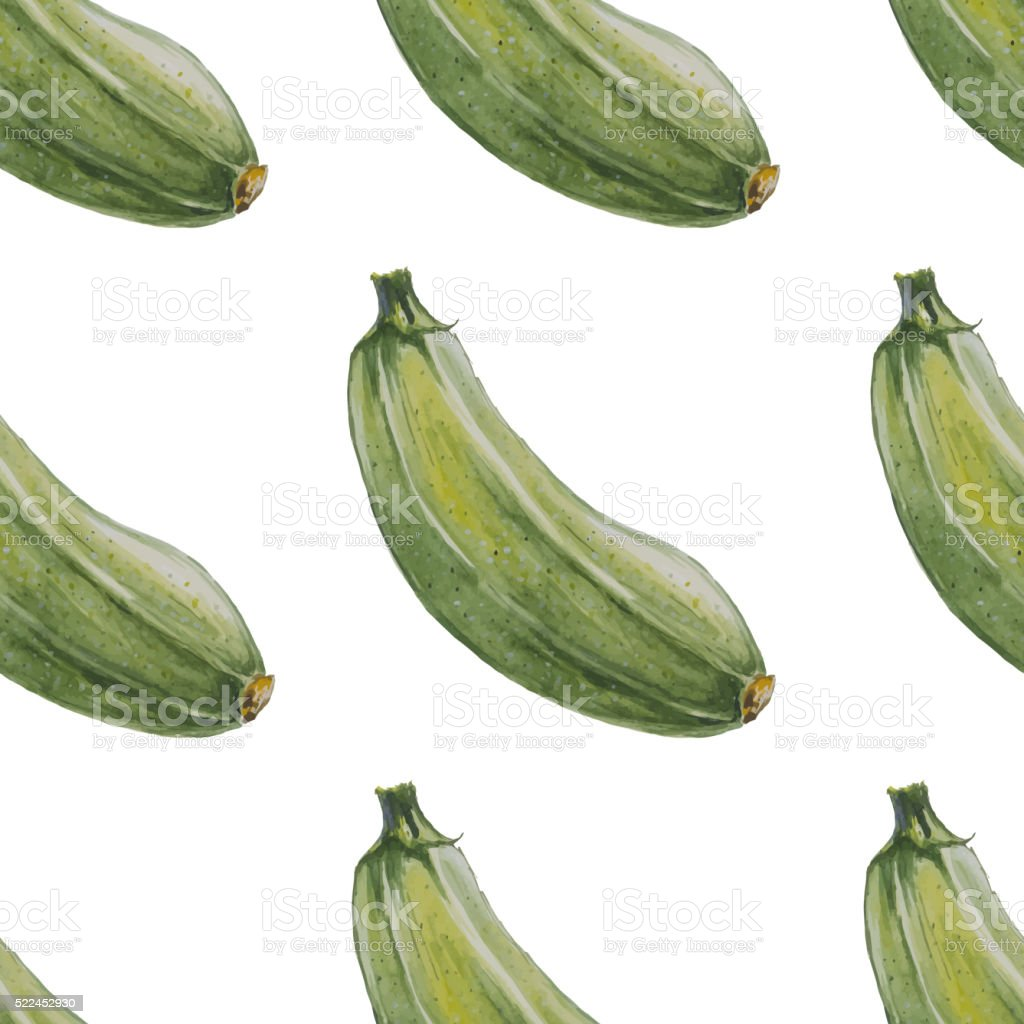 Watercolor hand drawn seamless pattern with zucchini. vector art illustration