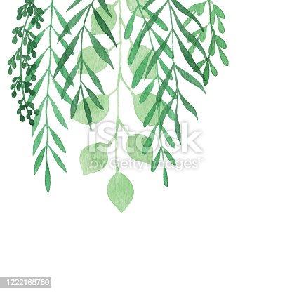 istock Watercolor Hanging Plants Background 1222168780
