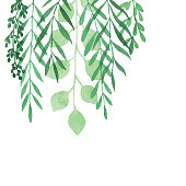 istock Watercolor Hanging Plants Background 1222168780