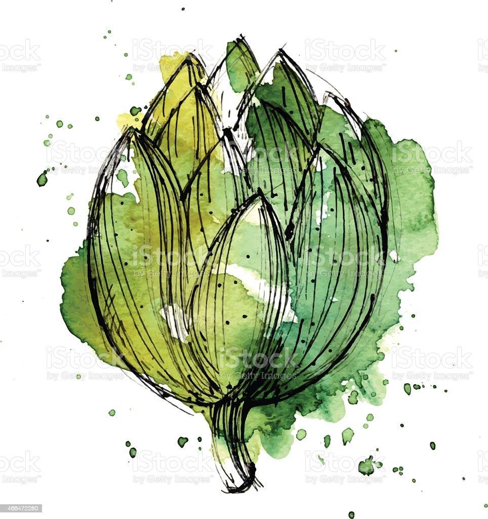 Watercolor illustration of artichoke vector art illustration