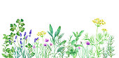 istock Watercolor illustration of herb garden with changeable layout. Vector data (dill, sage, mint, rosemary, chives, thyme, oregano, lavender, Italian parsley) 1278380215