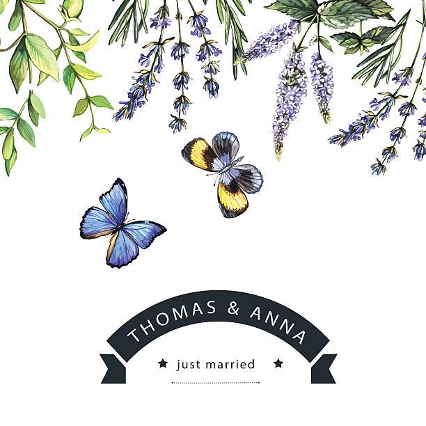 watercolor invitation with herbs and butterflies - schwimmpflanzen stock-grafiken, -clipart, -cartoons und -symbole