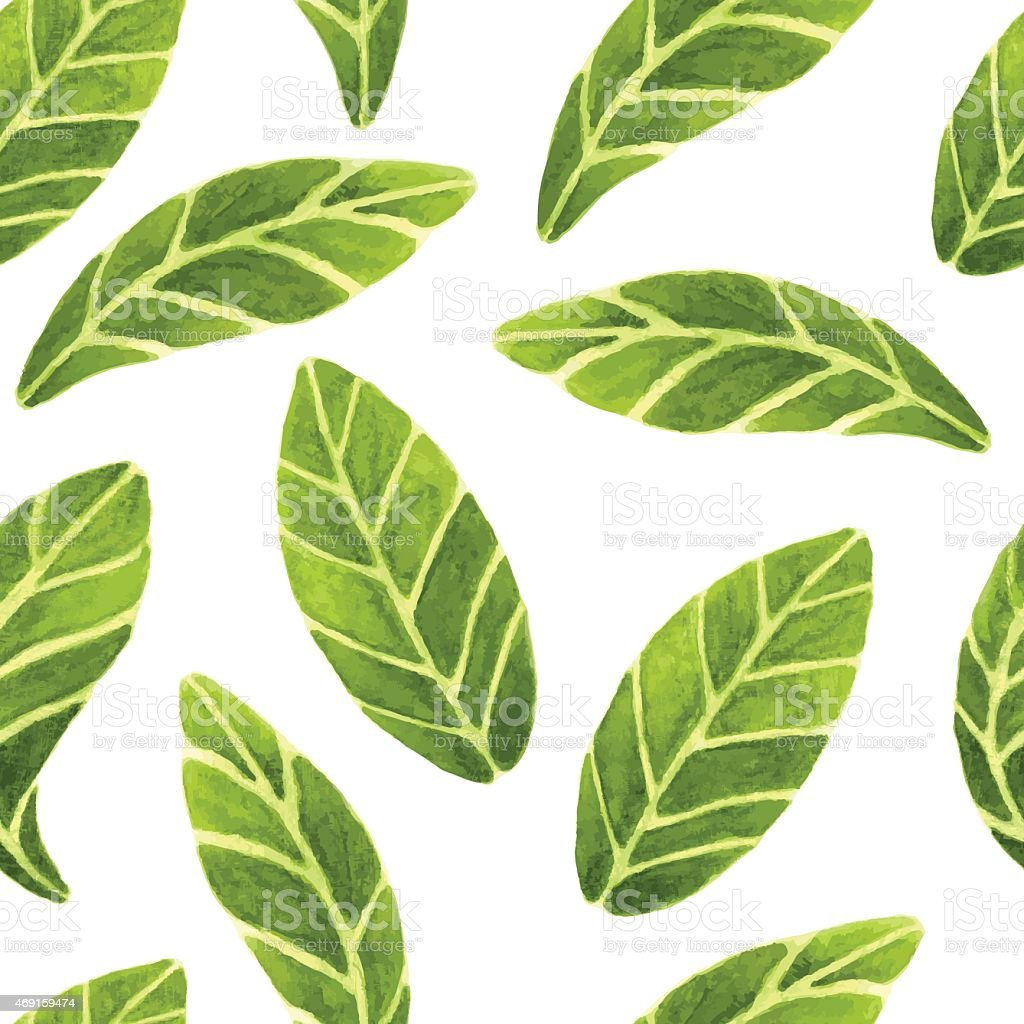 watercolor leaves pattern vector art illustration