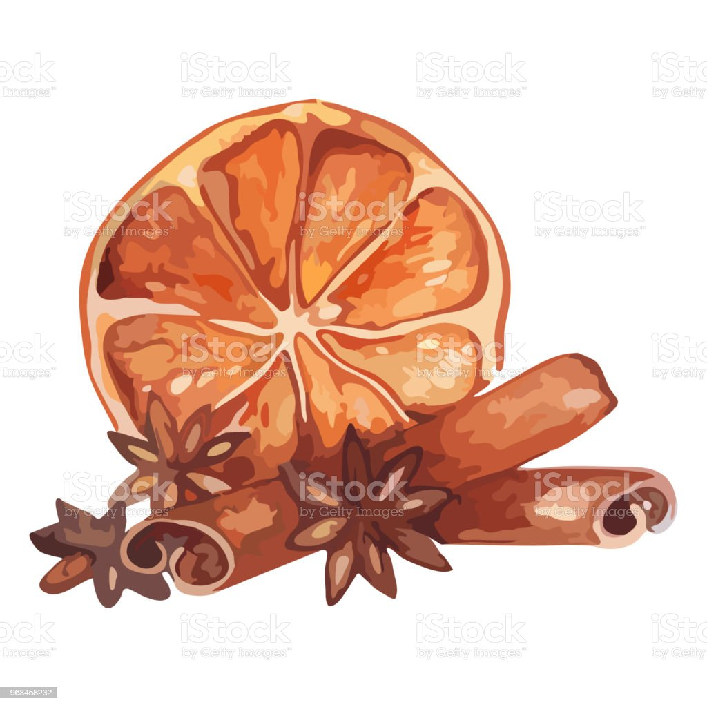 Akwarela cytrynowa cytrusowa anyż cynamon owoc martwa natura izolowany wektor - Grafika wektorowa royalty-free (Cytryna)