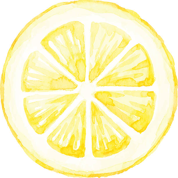 watercolor lemon slice - zitrone stock-grafiken, -clipart, -cartoons und -symbole