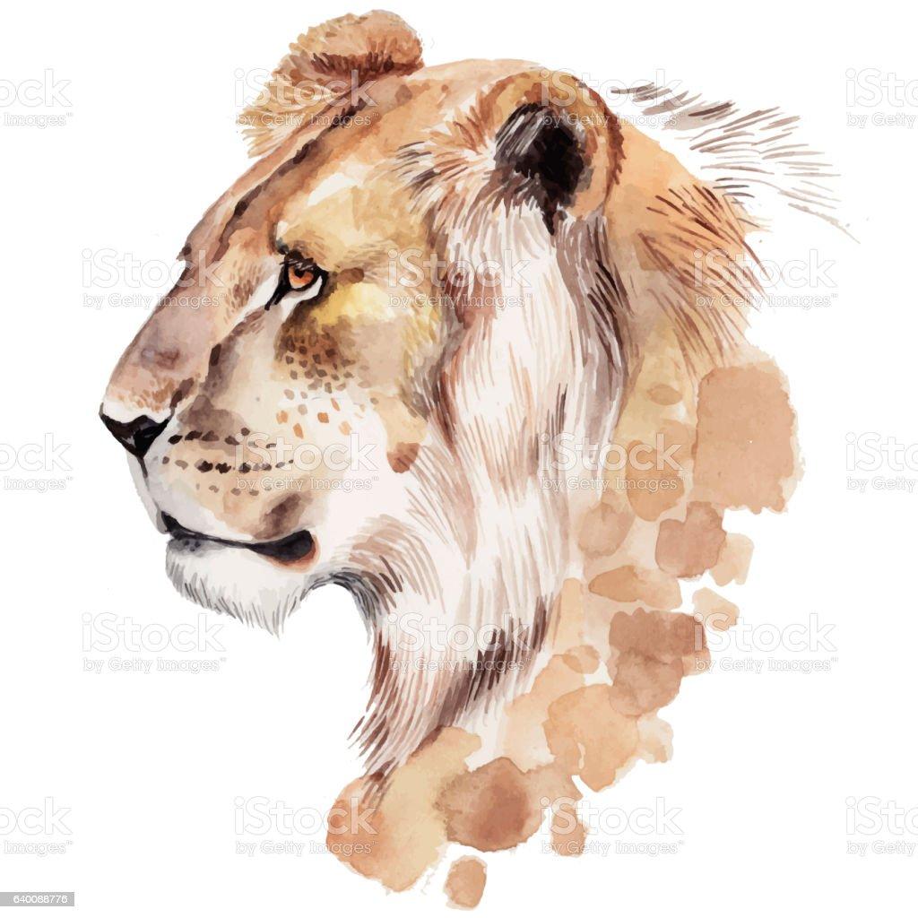Watercolor lion portrait. Hand drawn animal illustration vector art illustration