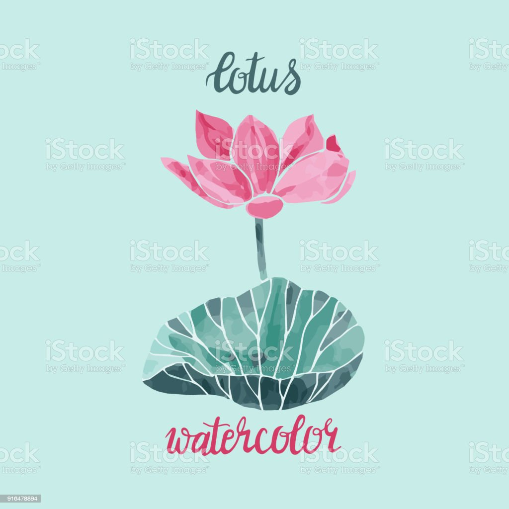 Watercolor Lotus Flower Isolated Vector Illustration Stock Vector