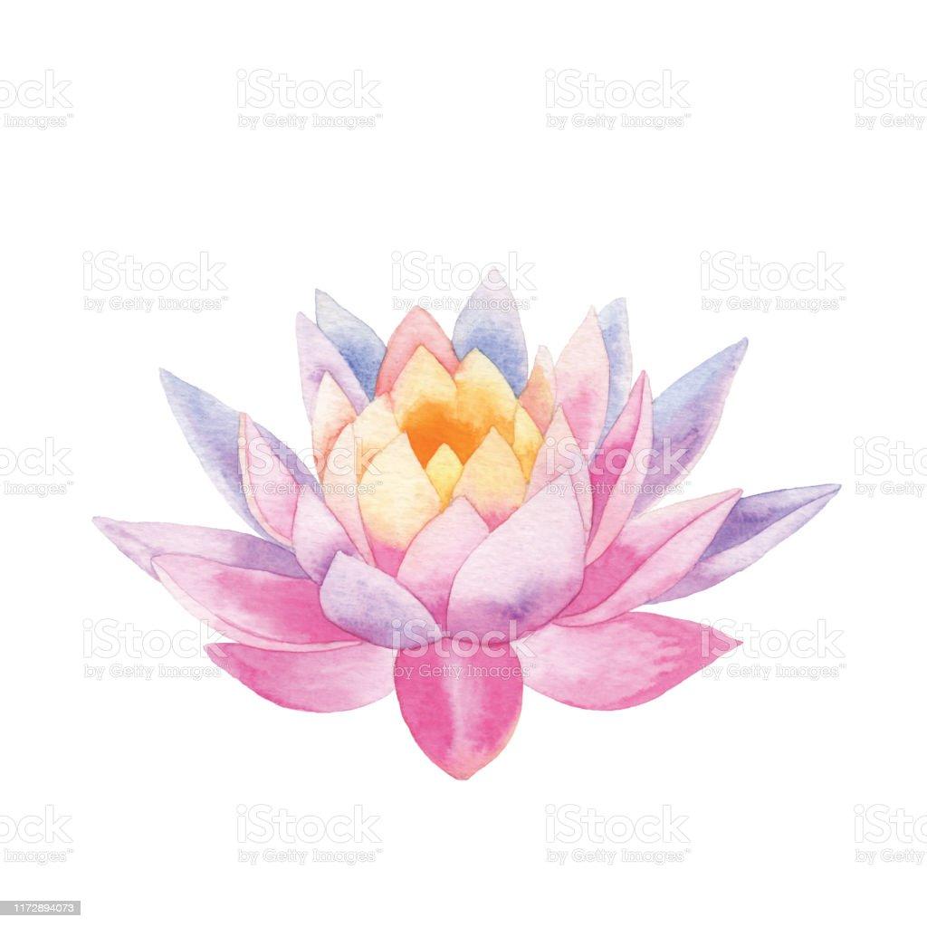 Aquarel Lotus - Royalty-free Abstract vectorkunst