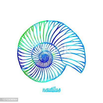 istock Watercolor Multi Colored Nautilus Isolated. Hand Painted Clip Art Design Element for Labels, Business Cards, Flyers. 1270308564