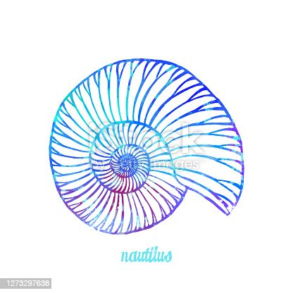 istock Watercolor Multi Colored Nautilus Isolated. Hand Painted Clip Art Design Element for Labels, Business Cards, Flyers. 1273297638