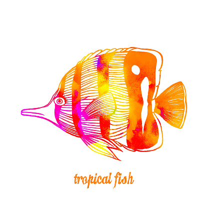 Watercolor Multi Colored Tropical Fish Isolated. Hand Painted Clip Art Design Element for Labels, Business Cards, Flyers.
