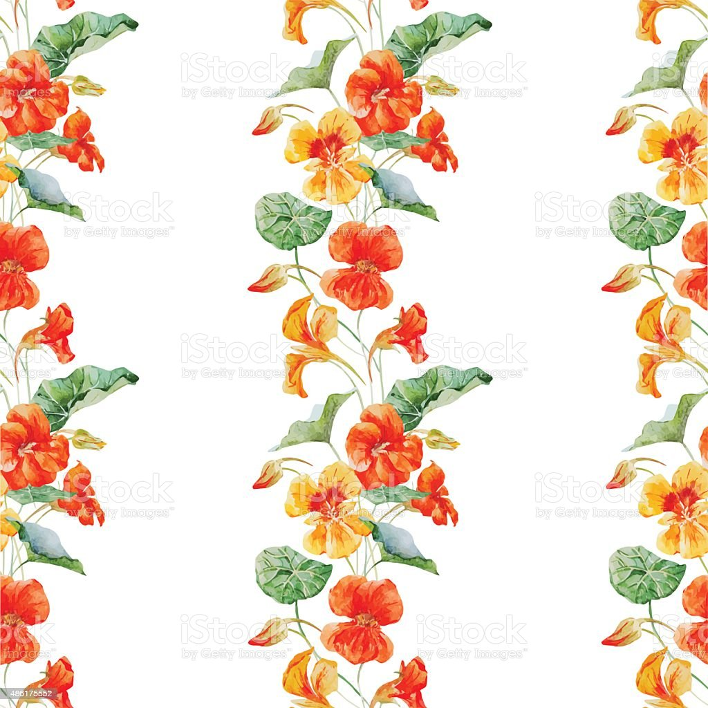 Watercolor nasturtium flower pattern royalty-free watercolor nasturtium flower pattern stock illustration - download image now