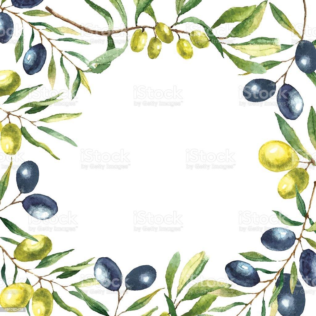 Watercolor olive branch background. vector art illustration