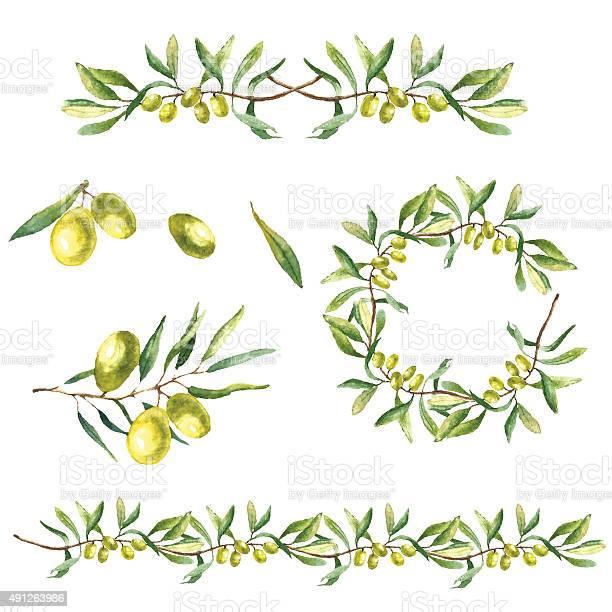 Watercolor olive branch background vector id491263986?b=1&k=6&m=491263986&s=612x612&h=wtkoxkynil0bsvkdyzmj9gpgjusxrhrkpzpg spmyiw=