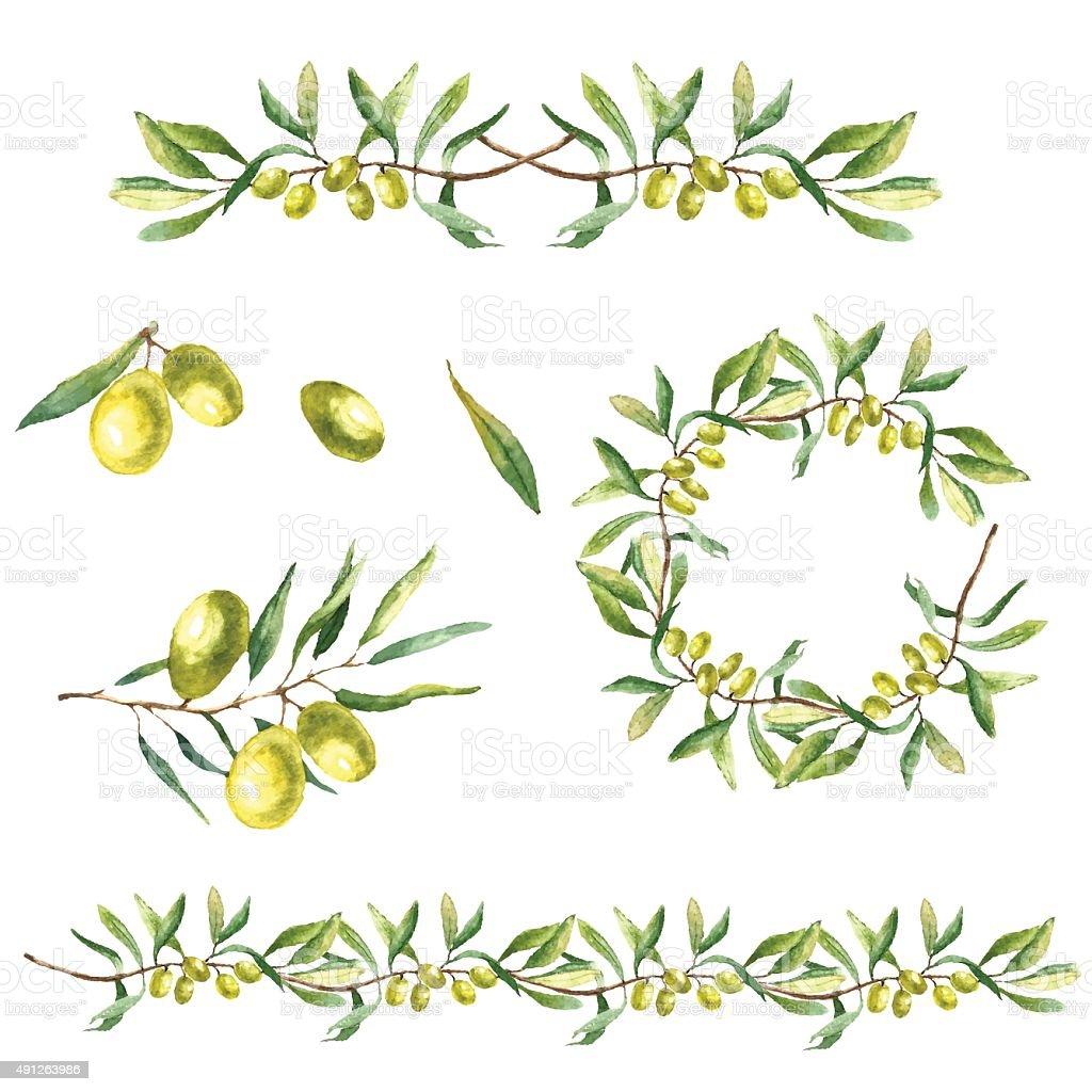 royalty free olive branch clip art vector images illustrations rh istockphoto com olive branch clip art white olive branch border clip art