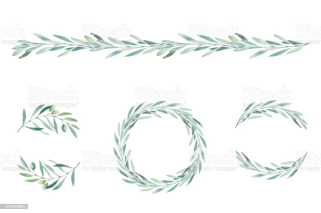 Watercolor olive branch. Sketch of olive branch on white background royalty-free watercolor olive branch sketch of olive branch on white background stock illustration - download image now
