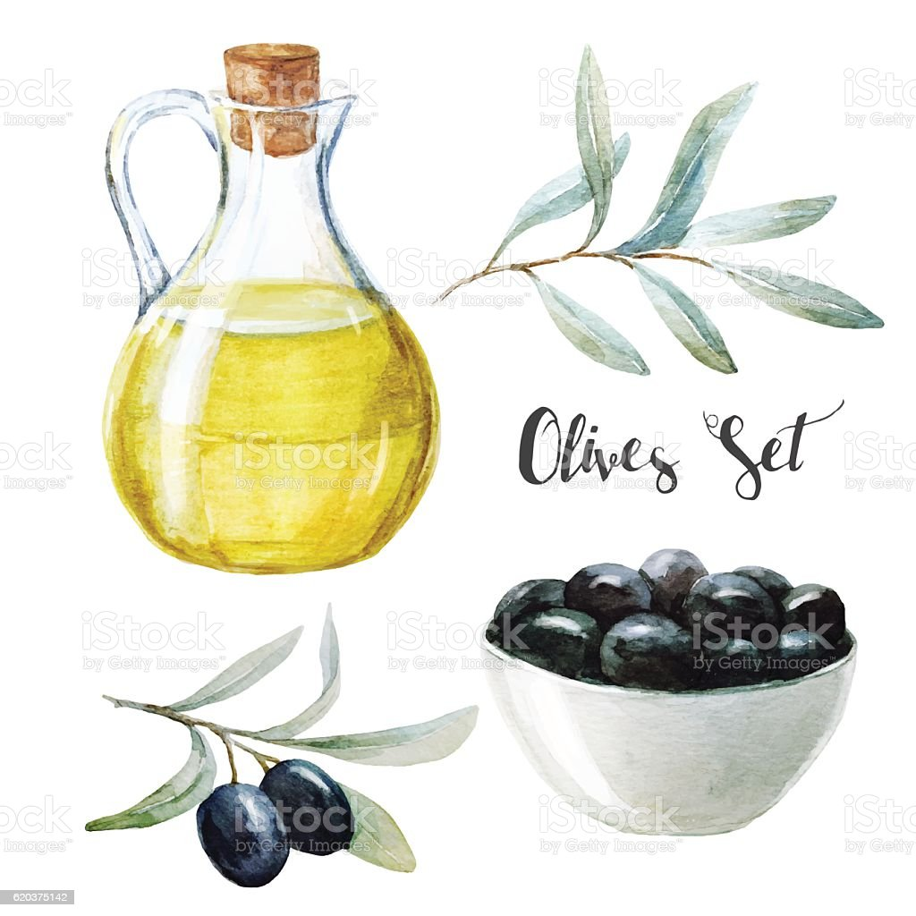 Watercolor olives and olive oil watercolor olives and olive oil - stockowe grafiki wektorowe i więcej obrazów błyszczący royalty-free
