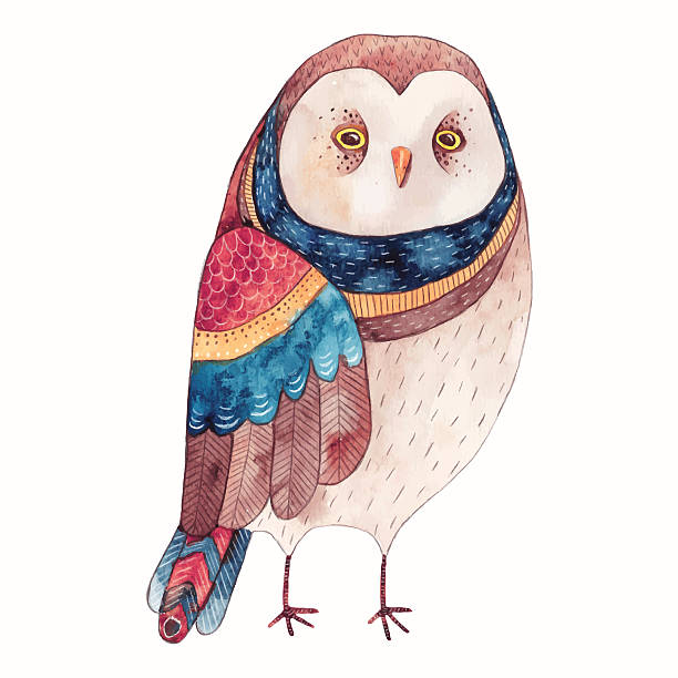Ilustración de búho acuarela - ilustración de arte vectorial