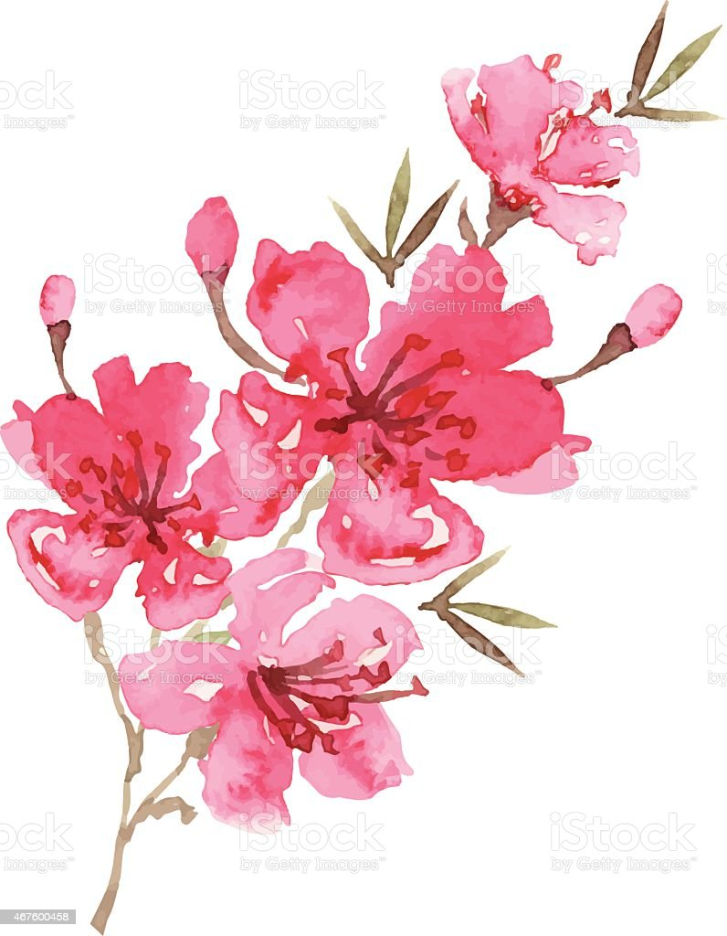 Pink flowers painting images flower decoration ideas pink flowers painting image collections flower decoration ideas pink flower painting image collections flower decoration ideas mightylinksfo