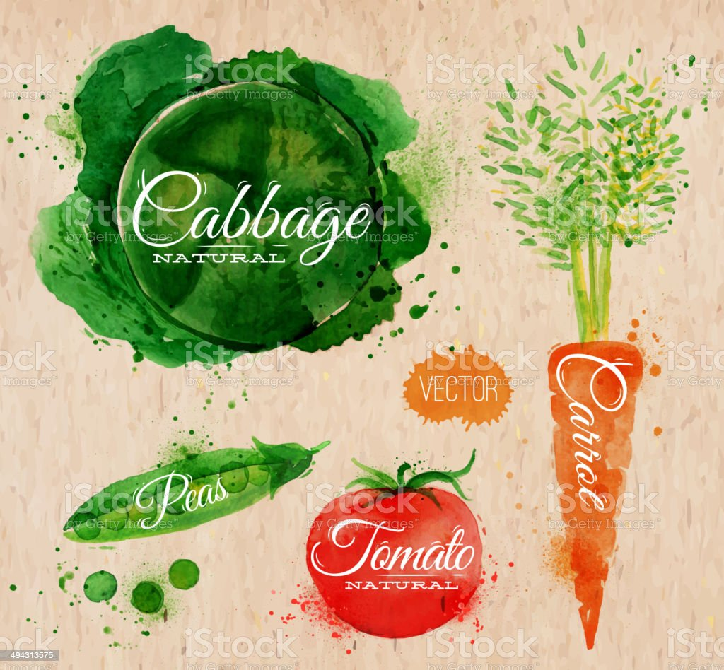 Watercolor painting of vegetables vector art illustration