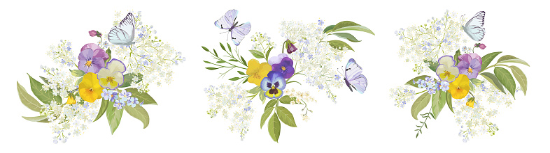 Watercolor pansy flowers bouquet collection. Vector viola spring floral set, butterfly illustration. Summer bloom violet plant decoration design elements