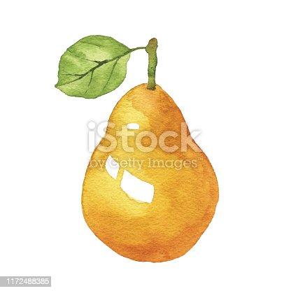 Vector illustration of Pear.