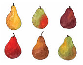 Six different pear varieties using watercolors on a transparent background.