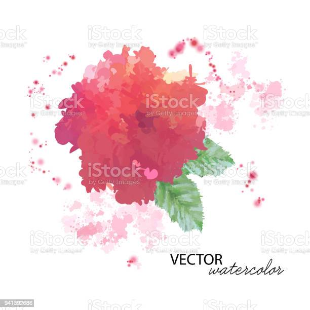 Watercolor peony flower vector id941392686?b=1&k=6&m=941392686&s=612x612&h=xu44gzeocuijgzxaacjyck aoqqqriphtolgmymppdw=