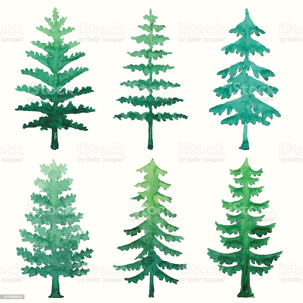 watercolor pine trees stock vector art more images of christmas rh istockphoto com pine tree vector free pine tree vector clip art