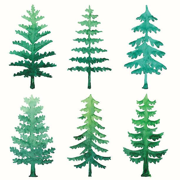 609+ Watercolor Christmas Tree Svg – SVG Bundles