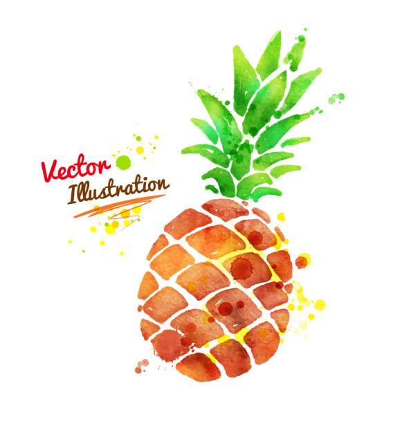 Wodne Ananas. – artystyczna grafika wektorowa