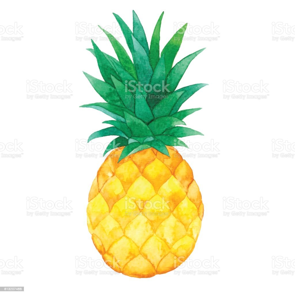 Watercolor Pineapple – artystyczna grafika wektorowa