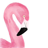 Watercolor Pink Flamingo Portrait, Side View. Tropical Exotic Bird Background, Tropical Summer Concept, Design Element.
